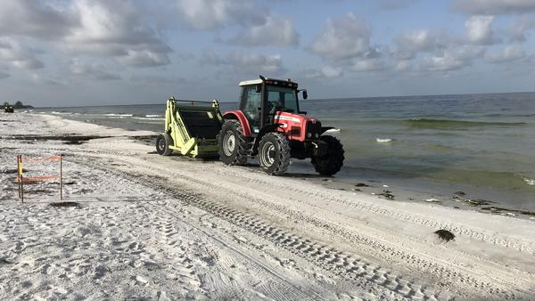 At Coquina Beach, crews are out early using beach rakes to clear dead fish. The fish are dying because of a toxic algae bloom known as red tide.