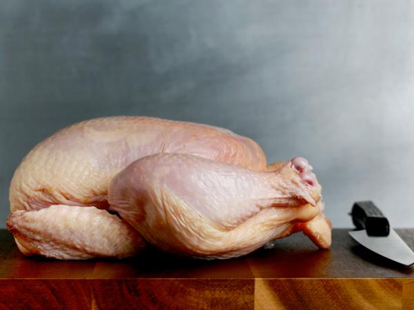 The CDC traced a salmonella outbreak that sickened more than a dozen people to a New York-based Kosher chicken brand.