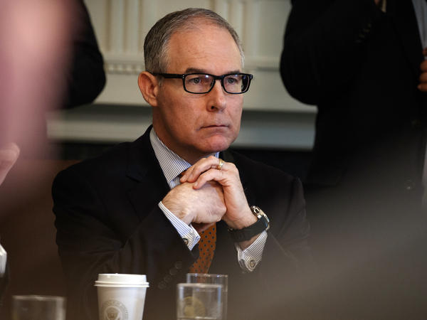 Then-Environmental Protection Agency Administrator Scott Pruitt at a Cabinet meeting in June.