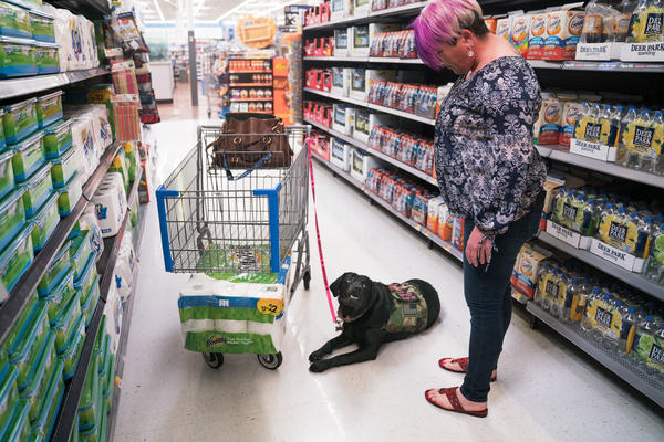 Leigh Michel with Lizzy, her service dog, attracts more attention than the average shopper at her grocery store.