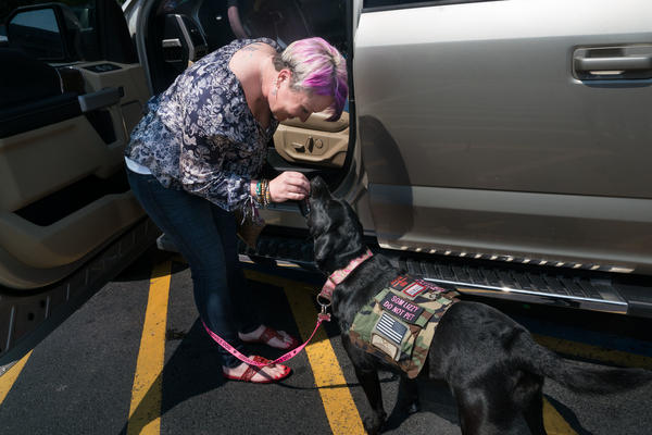 The National Center for PTSD argues that psychiatric service dogs might hamper<strong> </strong>recovery by rendering veterans unable to function without a dog at their side.