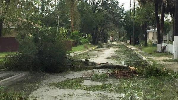 Hurricane Irma storm debris in St. Johns County  is pictured in this September 2017 file photo.