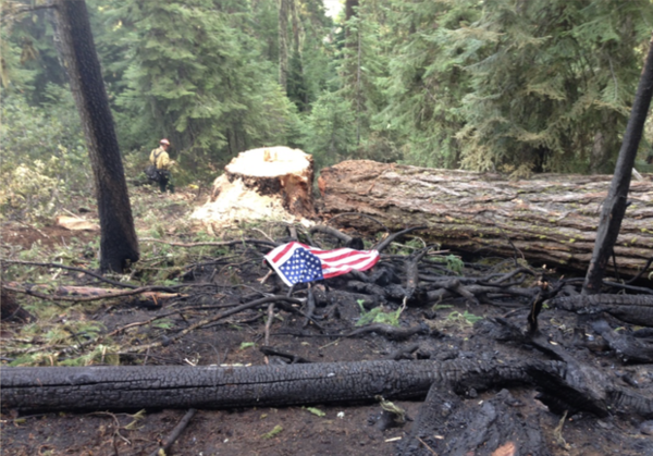 <p>In 2013, a flag was laid upon the spot where John Hammack died. Hammack was crushed by a falling tree that had been struck by lightning.</p>