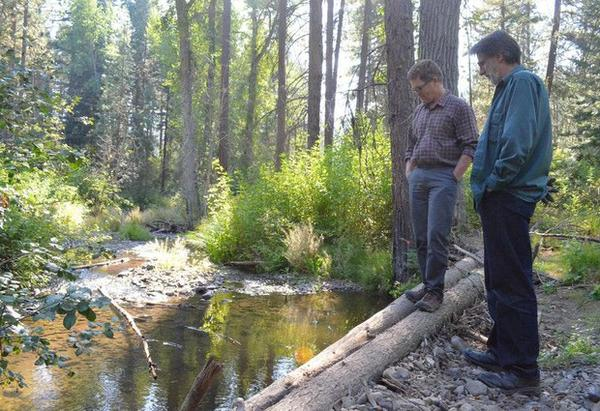 <p>Scott Nicolai, a Yakama Nation habitat biologist, and Dave Morrow, a local landowner, observe juvenile fish in the stream they restored together.</p>