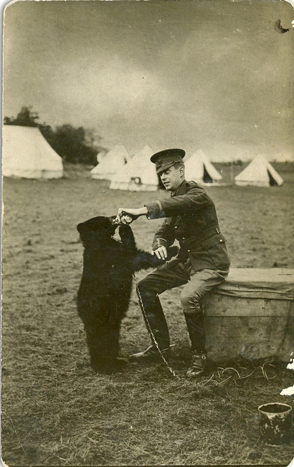 Harry Coleborne with Winnie at the military base in Valcartier, Quebec, in 1914. (Courtesy)