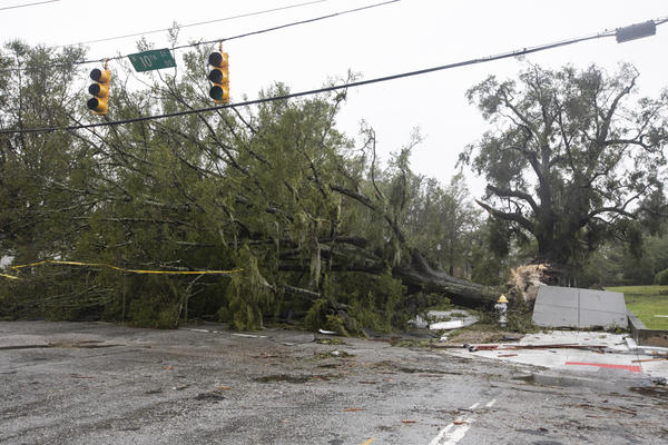 A fallen tree shows the force of Florence's wind gusts. Florence has dumped more than a foot of rainwater on parts of southeastern North Carolina since making landfall near Wrightsville Beach at 7:15 a.m. ET on Friday.