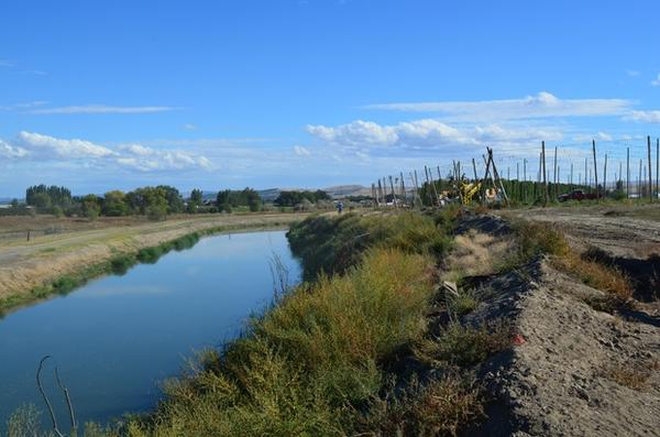 <p>The Carpenter family relies on irrigation canals to bring water from the mountains to their hops farm in the otherwise arid Yakima Valley.</p>