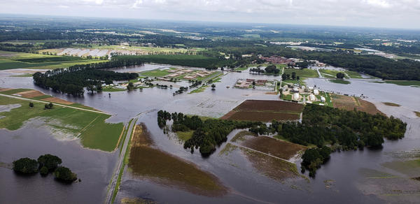 Hurricane Florence brought large amounts of rain to North Carolina, resulting in widespread flooding. Flooding, particularly of hog lagoons, has sparked environmental concern in some areas.