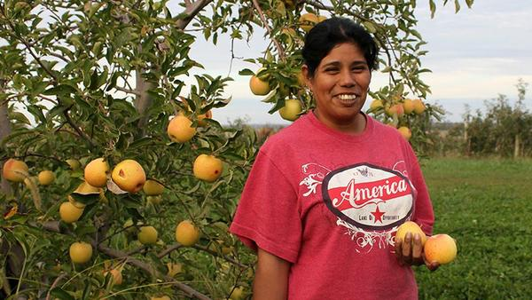 New research used data from the National Agricultural Workers Survey to analyze access to toilets, water and handwashing. The research shows that farmers are providing better access.