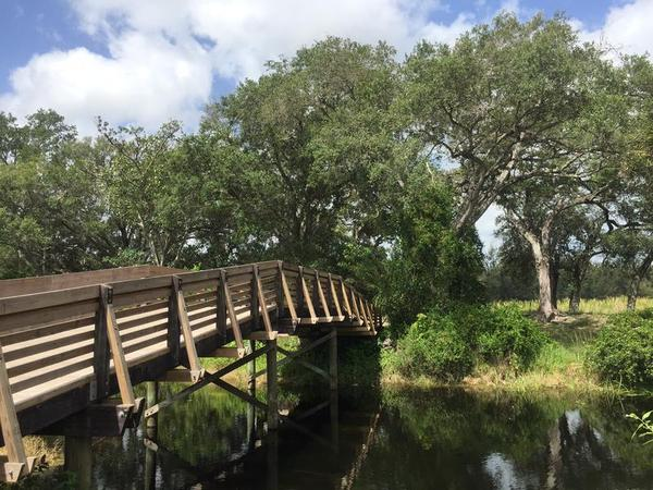 Tree Tops Park in Davie was created using more than $2 million from the federal Land and Water Conservation Fund. More than 180 natural areas in Southeast Florida have benefitted from the fund.