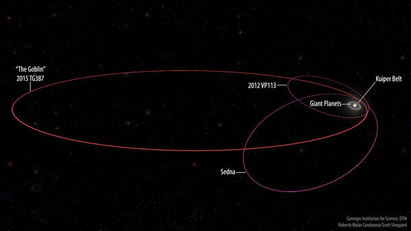 "The orbits of the new extreme dwarf planet 2015 TG387 and its fellow inner Oort Cloud objects 2012 VP113 and Sedna as compared with the rest of the Solar System. 2015 TG387 was nicknamed ͞""The Goblin"" by its discoverers, as its provisional designation contains TG and the object was first seen near Halloween."