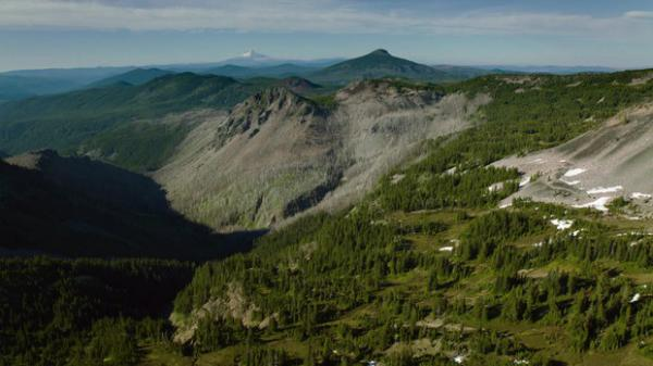 <p>What if a patchy, burned mosaic pattern is the historical state of many Northwest forests?</p>