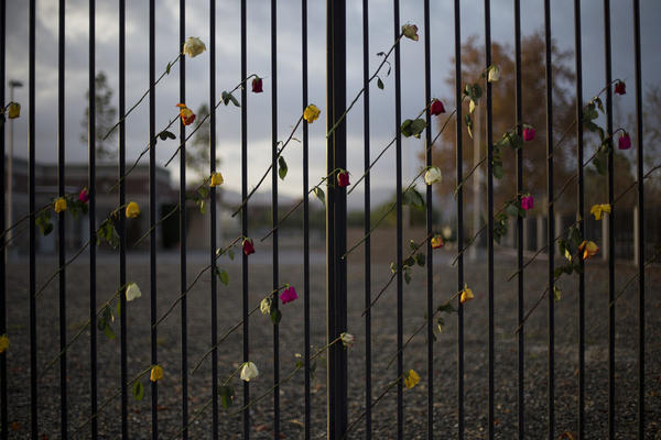 Roses adorn a makeshift memorial near the Inland Regional Center, Friday, Dec. 11, 2015, in San Bernardino, Calif. (AP Photo/Jae C. Hong)
