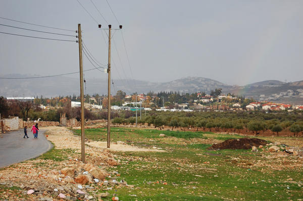 The Israeli settlement of Tekoa is just through an olive grove from the Palestinian town Tequa.