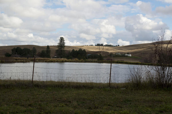 The ponds located at Syringa Mobile Home Park are used as sewage treatment. During the last 30 years, state inspectors have repeatedly found that the community's owner was breaking drinking water laws.