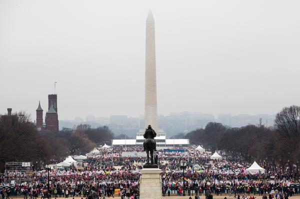 Protesters crowd the National Mall during the Women's March on Washington.