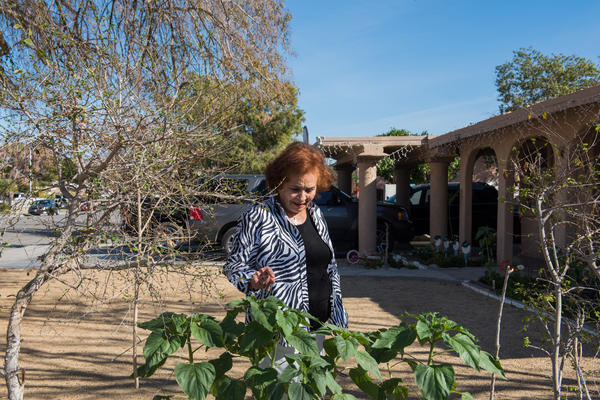 Ramona Morales' renters kept chickens, which annoyed some neighbors and was against Indio's municipal code on keeping farm animals in a residential area.