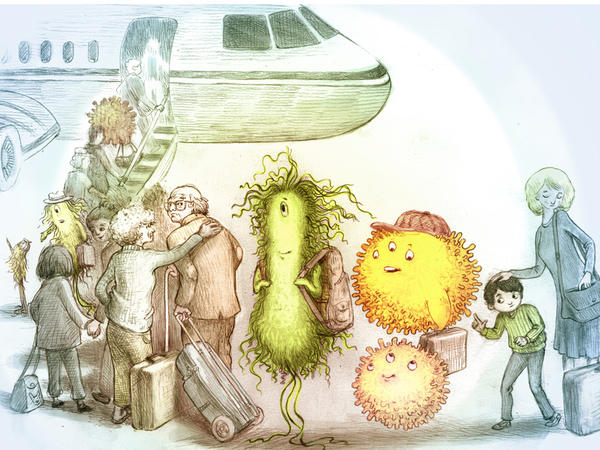 Suspicious travel companions: Bacteria can survive for days on surfaces inside a plane. But that doesn't mean you have to take these critters home with you.