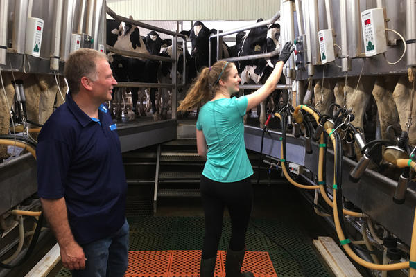 """By somehow opening up the Canadian market to American producers, it is not going to solve their overproduction problem,"" says Murray Sherk, the owner of the family-run Pinehill Dairy in Plattsville, Ontario, here with daughter Melodie Sherk. ""What they need to have is some way of controlling production, because the market just gets flooded."""