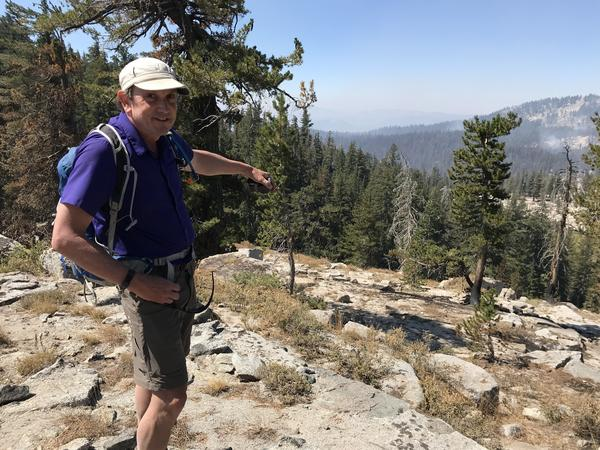 Fire ecologist Malcolm North looks down at the still-burning Lions Fire from a ridge in the Sierra Nevadas.