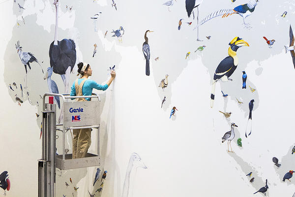 Jane Kim, hard at work on the Wall of Birds.