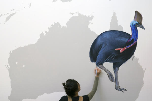 Kim puts the finishing touches on a cassowary.