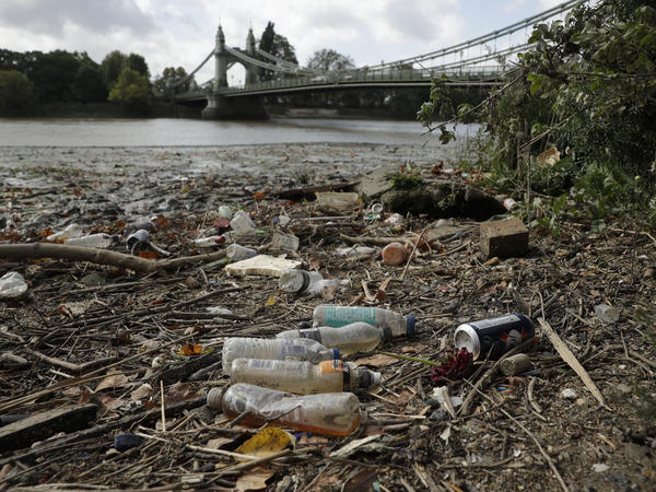 Single-use plastic bottles lie washed up on the bank of the River Thames by the Queen Caroline Draw Dock in London.