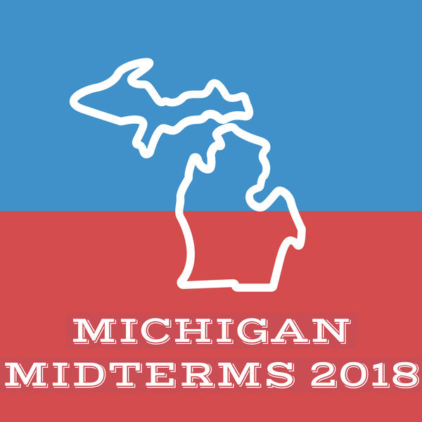 Yesterday's midterm elections sent Democratic women to fill top seats in Michigan, but Republicans maintained control of the state Legislature.