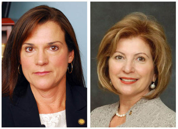 Republican incumbent Dana Young (left) and Democrat Janet Cruz (right) are locked in a razor-thin fight to be the next state senator for district 18 in Hillsborough County.