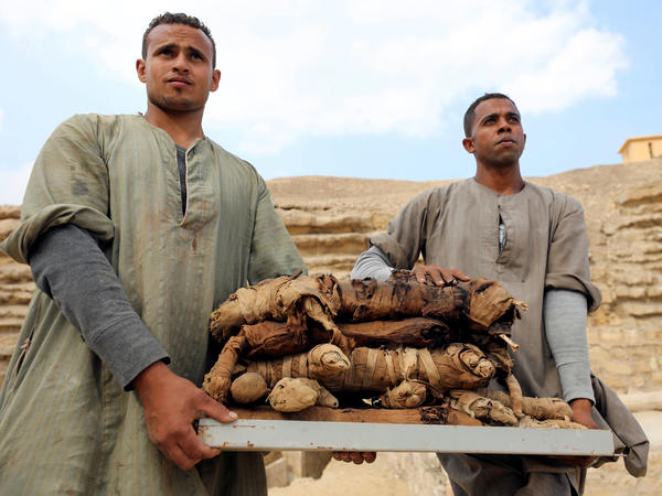 Men carry mummified cats from a tomb at the Saqqara necropolis in Egypt on Saturday.