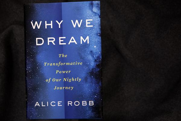 """""""Why We Dream — The Transformative Power Of Our Nightly Journey,"""" by Alice Robb. (Robin Lubbock/WBUR)"""