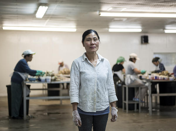 Van Le, who owns Seadrift Seafood along with her husband, inside of her processing room where Vietnamese women pick the meat from crabs and pack them in containers.