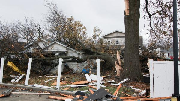 A tornado dropped a massive tree limb onto a garage and backyard swingset on Saturday, December 1, 2018, in Taylorville, Illinois.