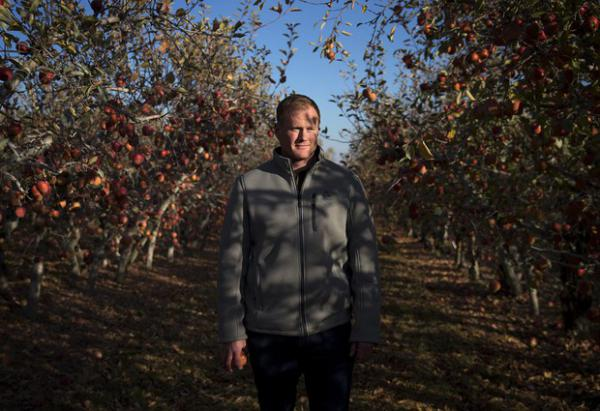 <p>Sean Gilbert, president of Gilbert Orchards, poses for a portrait on Tuesday, Nov. 20, 2018, in Yakima.</p>