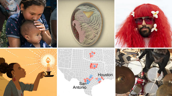 "A selection of NPR's memorable visual stories includes reporting at the U.S. and Mexico border, how birds-to-be get oxygen, a revival of a drag festival, looking into the the history of ""This Little Light of Mine,"" tracking which suburban congressional districts that Democrats turned from red to blue and melodic drumming."