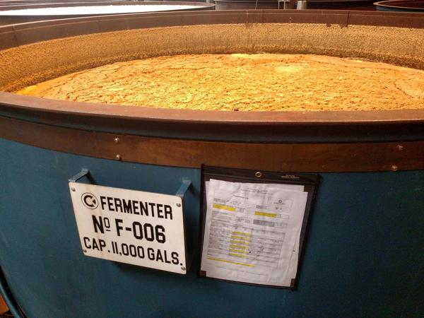 After the grain mash is cooled at Castle & Key, it's placed in a large tub where it begins to ferment. During alcoholic fermentation, yeasts convert the sugar into alcohol and carbon dioxide.