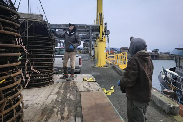 Peter Neaton and his crew unload black cod pots in Homer, Alaska after a November fishing trip in the Gulf of Alaska.