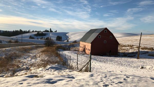 Snow-covered farm fields roll out outside Kendrick, Idaho. Farmers are stumped on what to plant this coming spring, as many of their traditional dryland crops are priced below the cost of production right now.