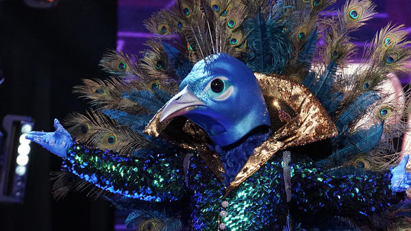<em>The Masked Singer</em> dares to dangle the question ... who is the Peacock?