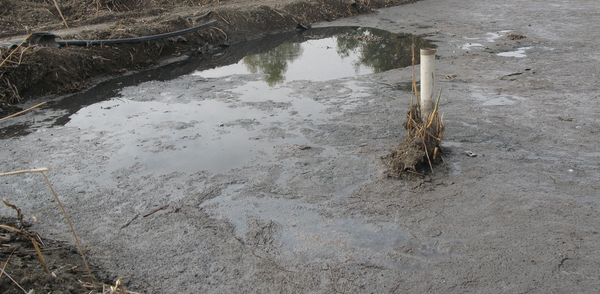 Generic photo of a sludge drying pond