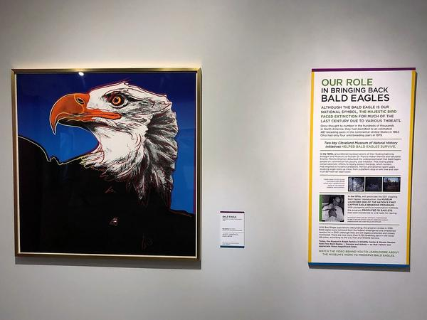 Warhol's series of screen prints highlight endangered or threatened species.