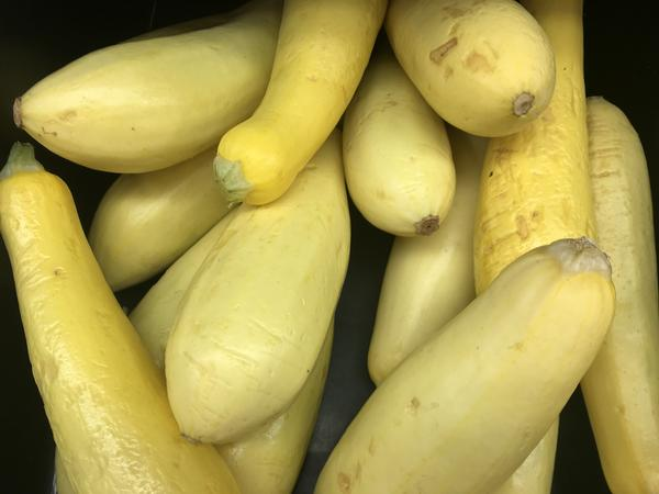These squash on sale at an Illinois grocery store have been genetically modified to resist a specific virus.