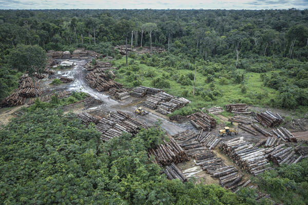 The Amazon plays a key role in regulating global climate. Brazil's president-elect, Jair Bolsonaro, has expressed skepticism of environmental concerns.