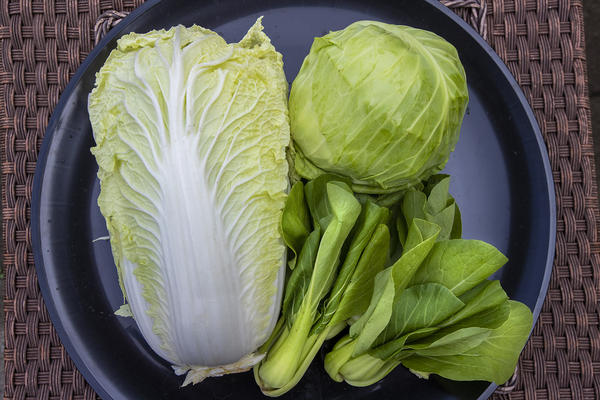 Here & Now resident chef Kathy Gunst says cabbage is inexpensive, good for you and can be used in a wide variety of ways. (Jesse Costa/WBUR)