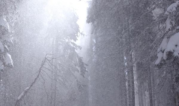 <p>Snow falls on Mount Ashland. Snow here drains into both the Klamath and Rogue basins.</p>