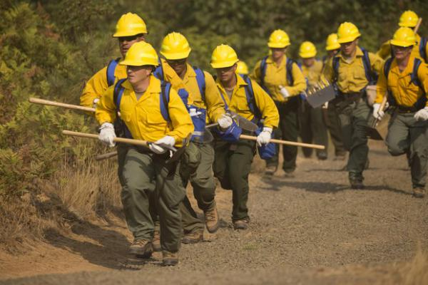 <p>Firefighters respond to wildfires in the UmpquaNational Forest in this Sept. 8, 2017 photo.</p>