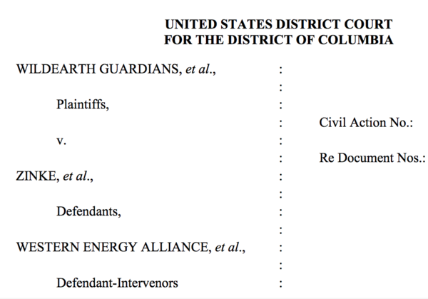 Screenshot from UNITED STATES DISTRICT COURT FOR THE DISTRICT OF COLUMBIA ruling