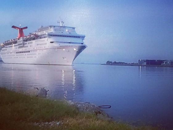 The Carnvial Paradise is one of three ships Carnival operates out of Port Tampa Bay.