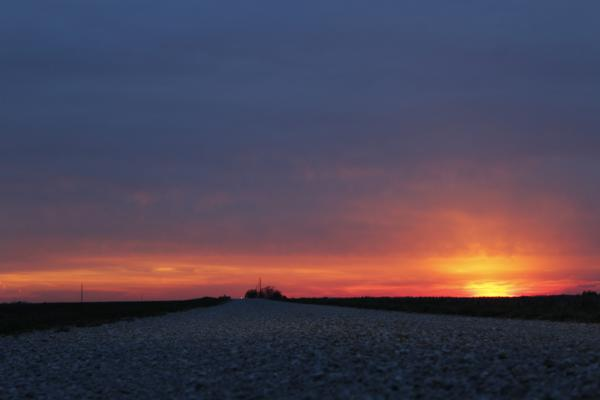 A sun sets over a remote dirt road after an unsuccessful day of trying to trap plovers in eastern Illinois.