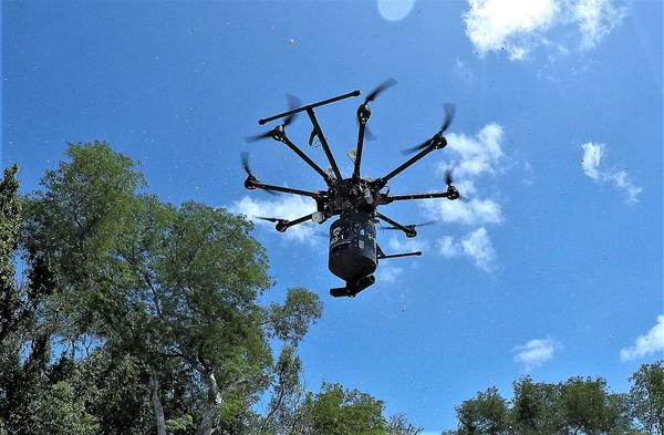 The drone can carry 7 to 8 pounds of larvicide, enough to cover an acre or more.